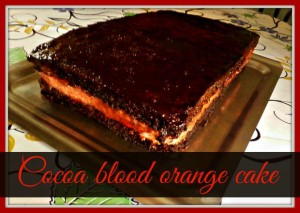 Cocoa blood orange cake - Anna Can Do It!