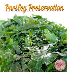 Parsley Preservation - Anna Can Do It!