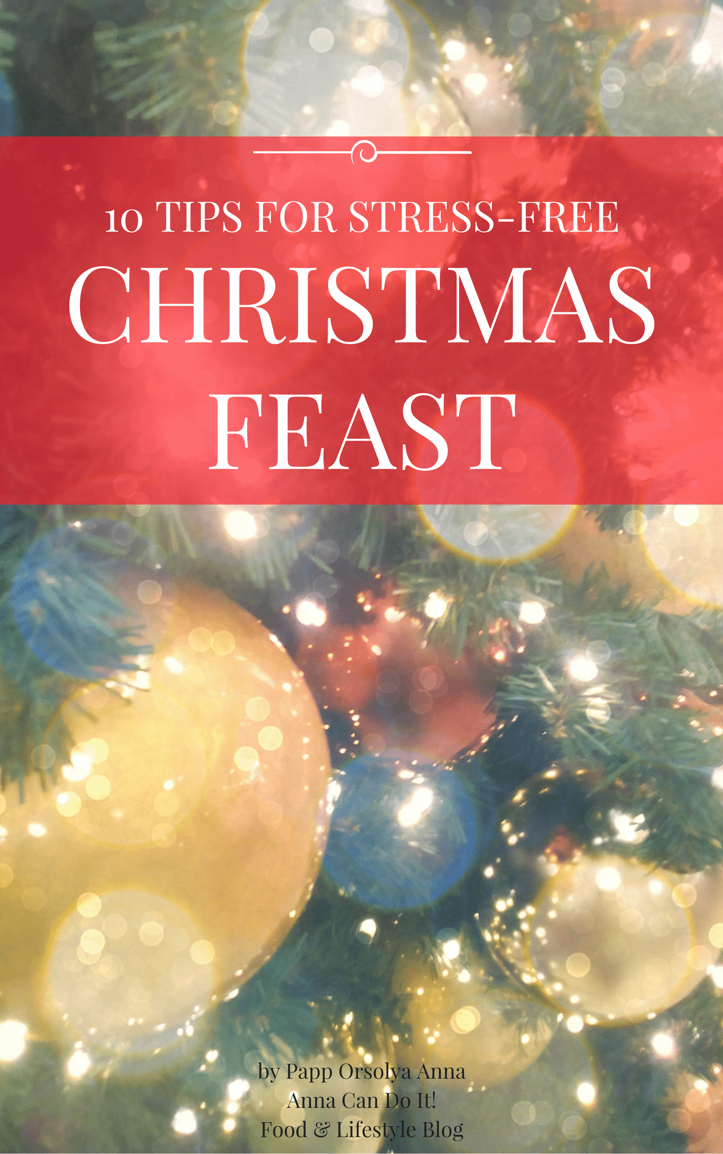 10 Tips for Stress-Free Christmas Feast - Anna Can Do It!