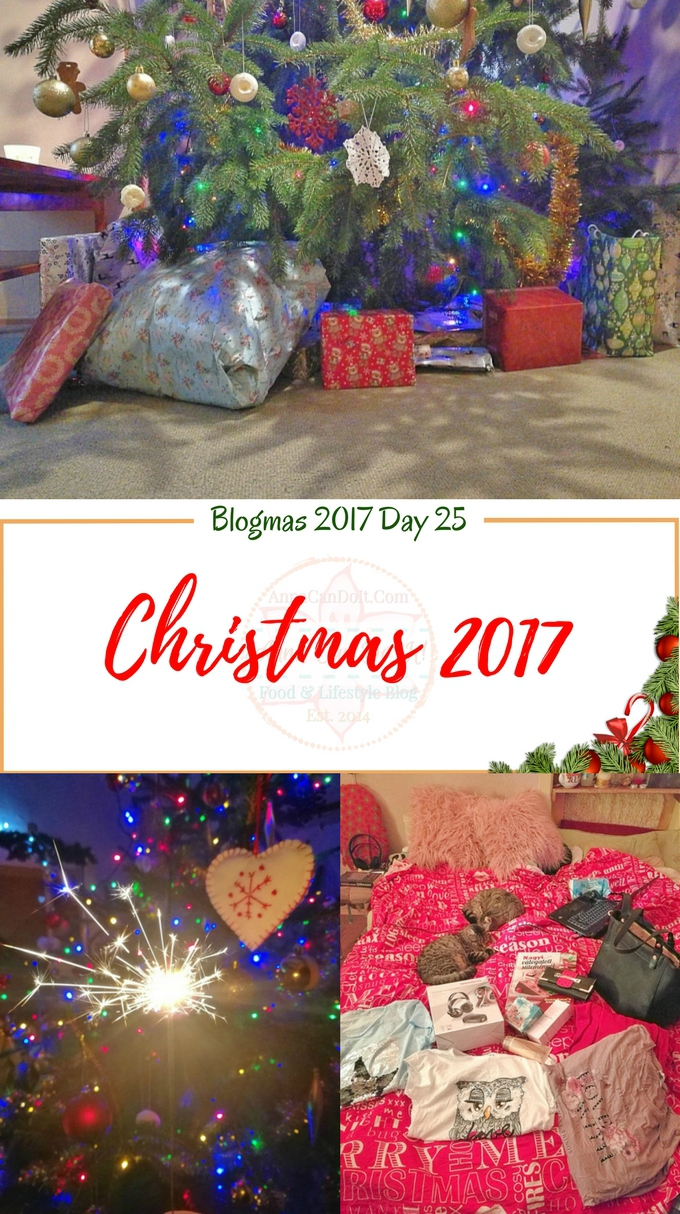 Christmas 2017 - Blogmas 2017 Day 25 - Anna Can Do It!