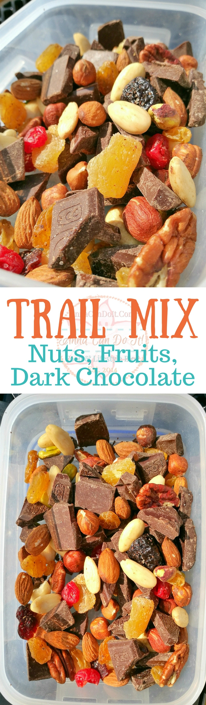 Trail Mix - Nuts, Fruits, Dark Chocolate - Anna Can Do It!